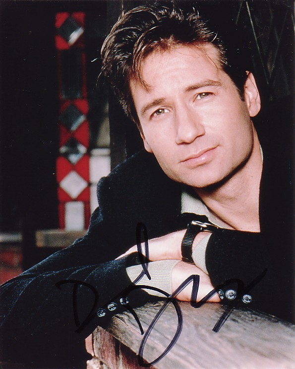 About David Duchovny
